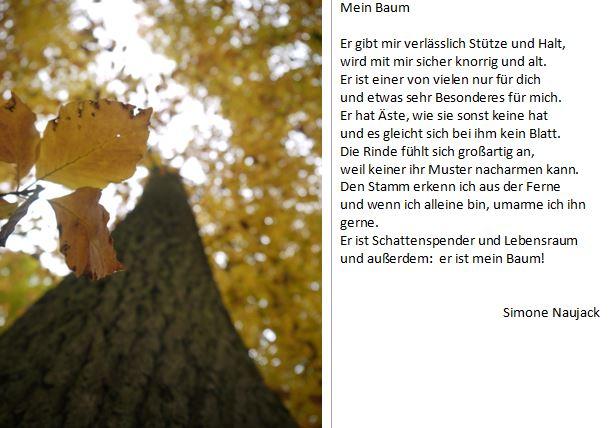 Gedicht Mein Baum